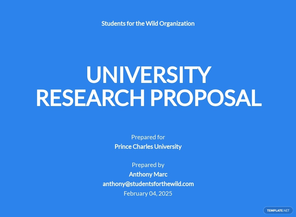 University Research Proposal Template