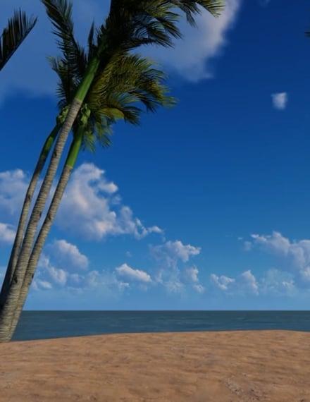 Beach Zoom Virtual Background Template