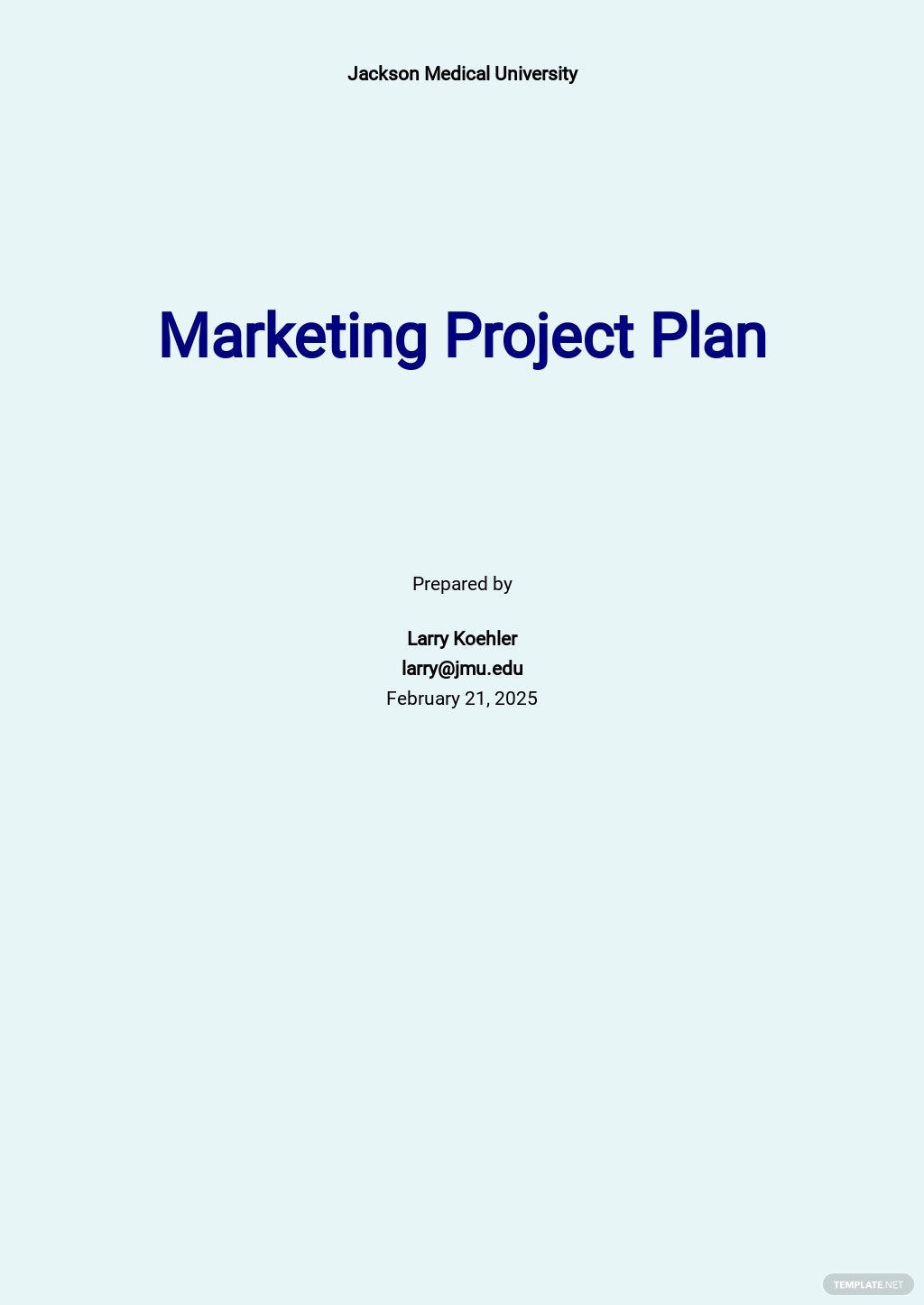 University Project Plan Template.jpe