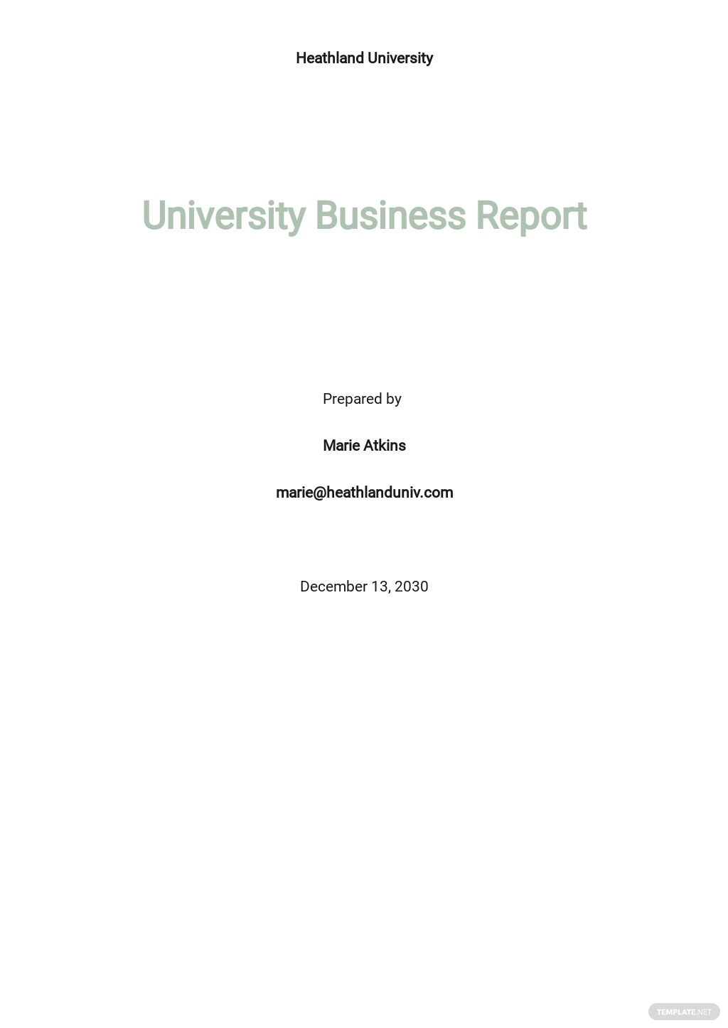 University Business Report Template