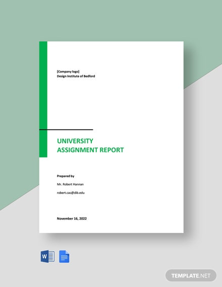 University Assignment Report Template