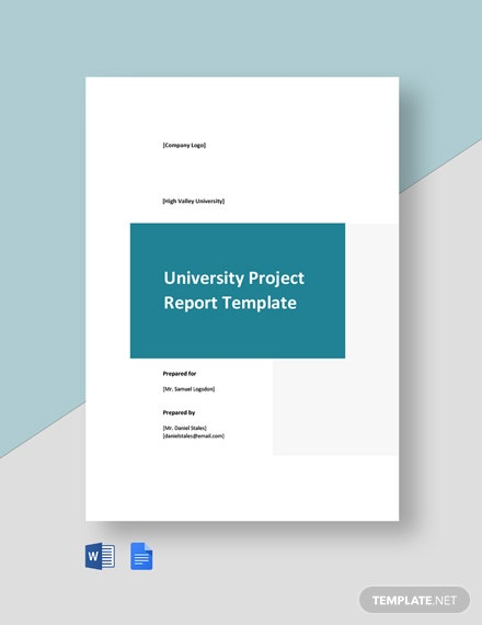 University Project Report Template