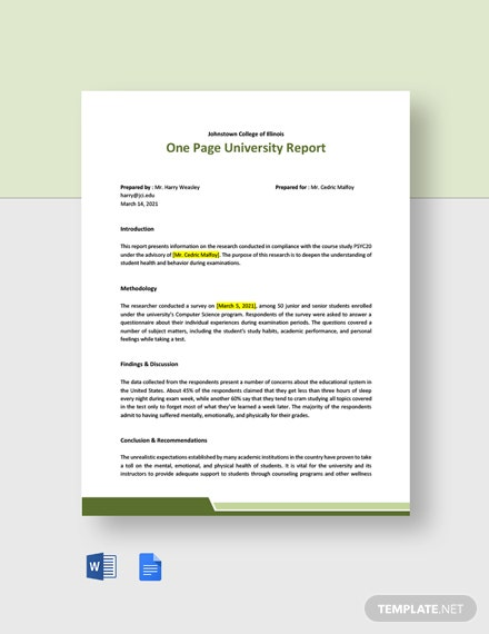 Free One Page University Report Template