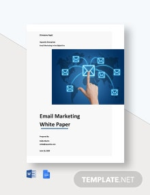 Email Marketing White Paper Template