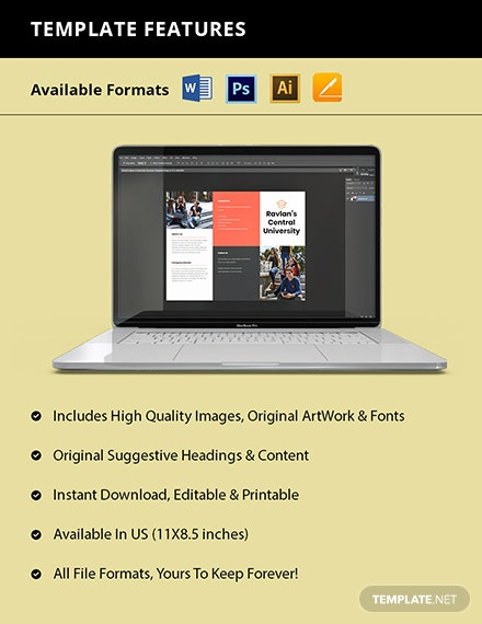 Trifold College  University Brochure Template Format