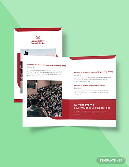 Bifold College  University Brochure Template Format