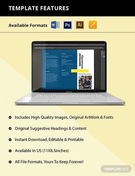 Free Modern Trifold University Brochure Template Format