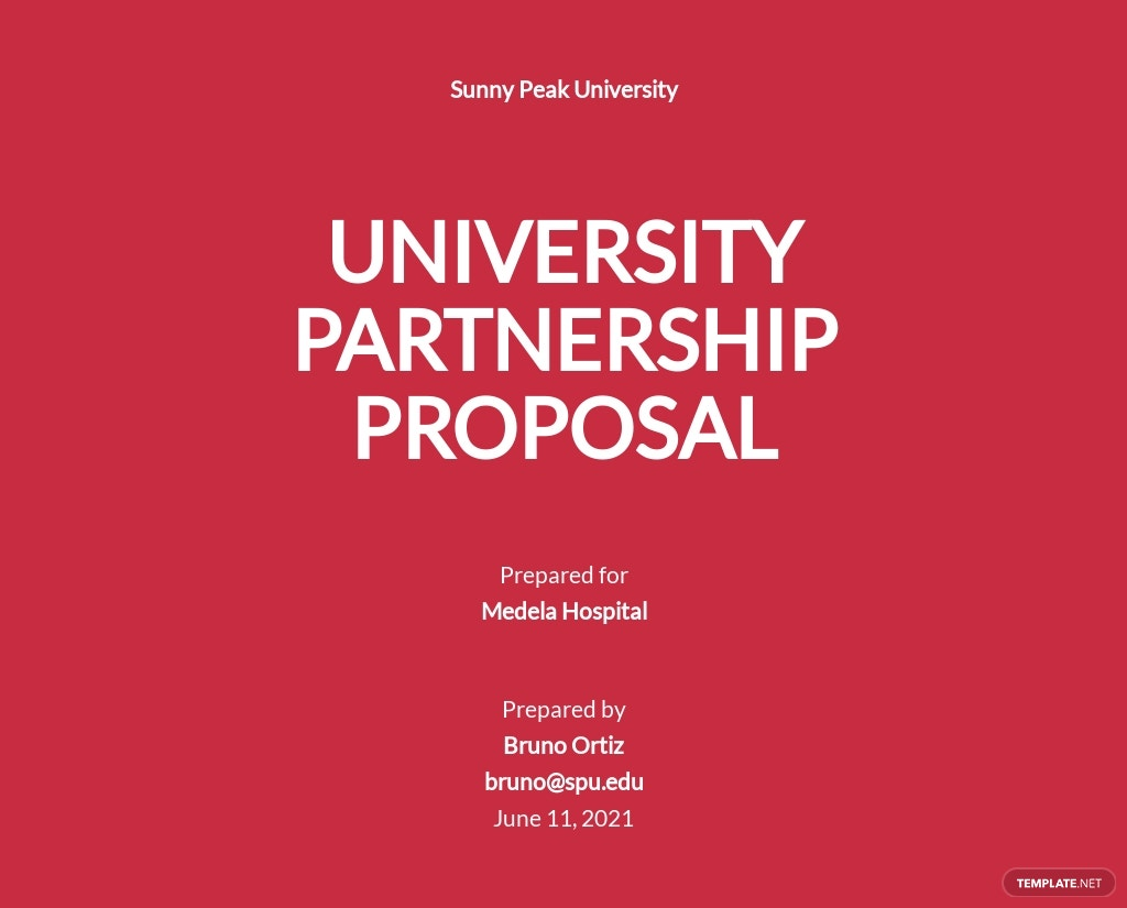 Editable University Partnership Proposal Template