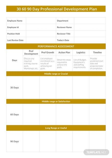 30 60 90 Day Professional Development Plan Template