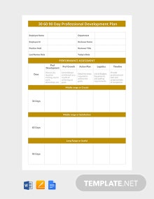 Free 30 60 90 Day Professional Development Plan Template