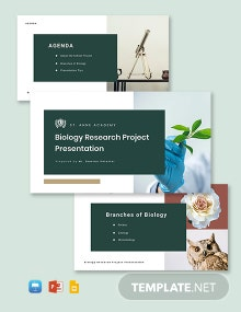 School Project Presentation Template