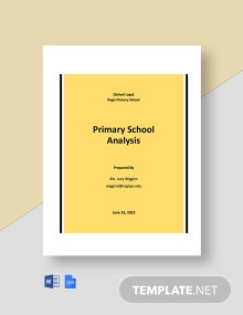 Primary School Analysis Template