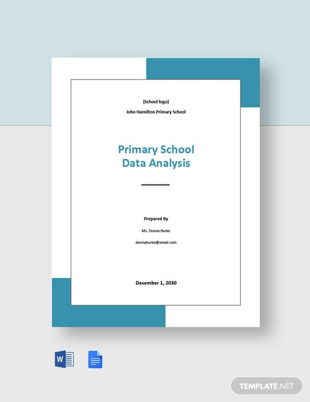 Primary School Data Analysis Template