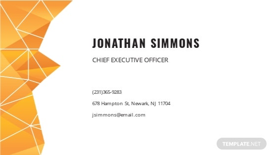 Professional Business Card Template 1.jpe
