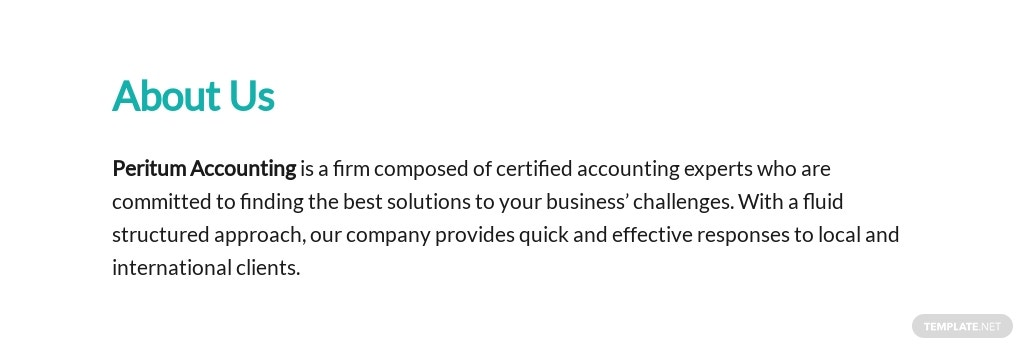 Accounting Business Proposal Template 1.jpe