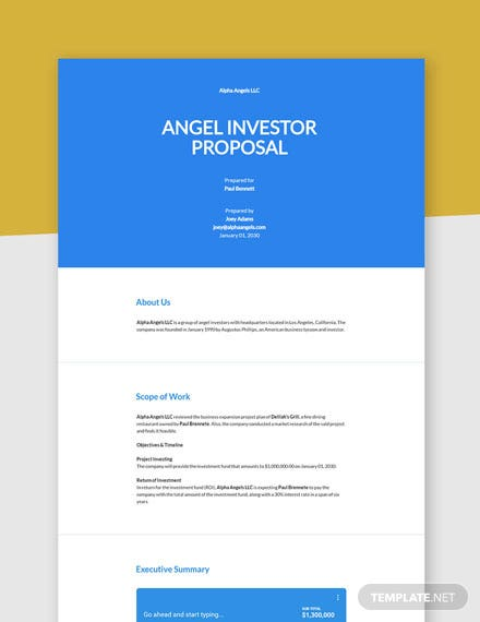 Angel Investor Proposal Template