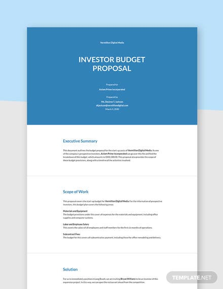Editable investor budget proposal