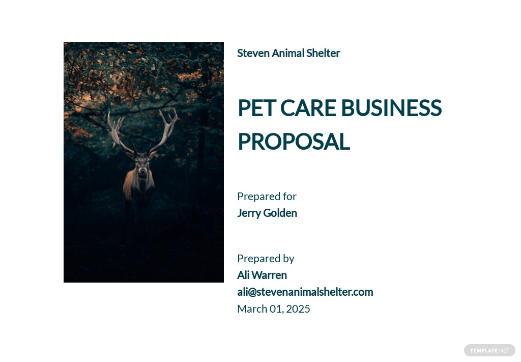 Non Profit Business Proposal Template [Free PDF] - Google Docs, Word, Apple Pages