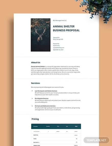 Non Profit Business Proposal Template