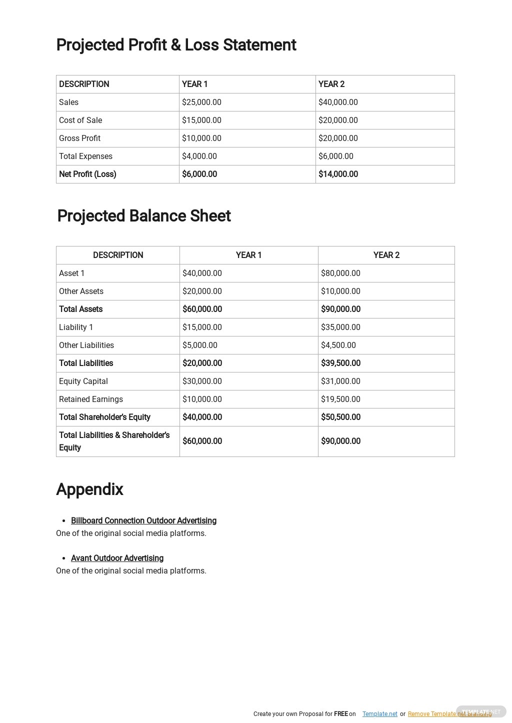 Outdoor Advertising Agency Business Plan Template 4.jpe