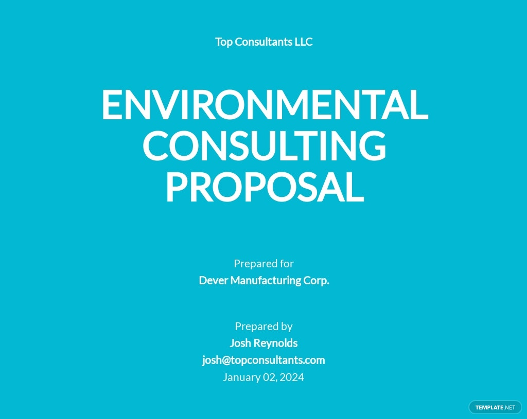 Consulting Work Proposal Template