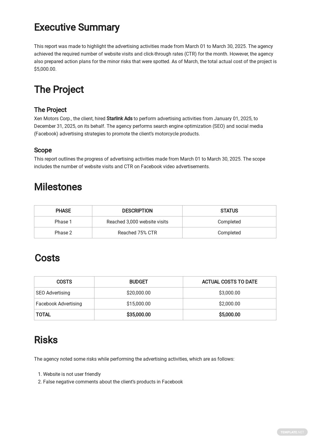 Advertising Agency Monthly Client Report Template 1.jpe