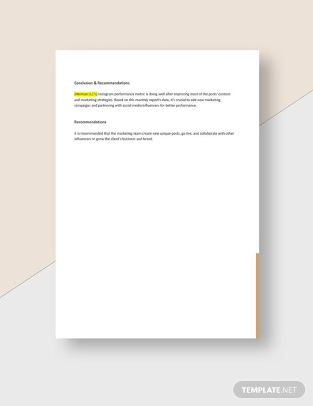 Editable Advertising Agency Monthly Client Report Download