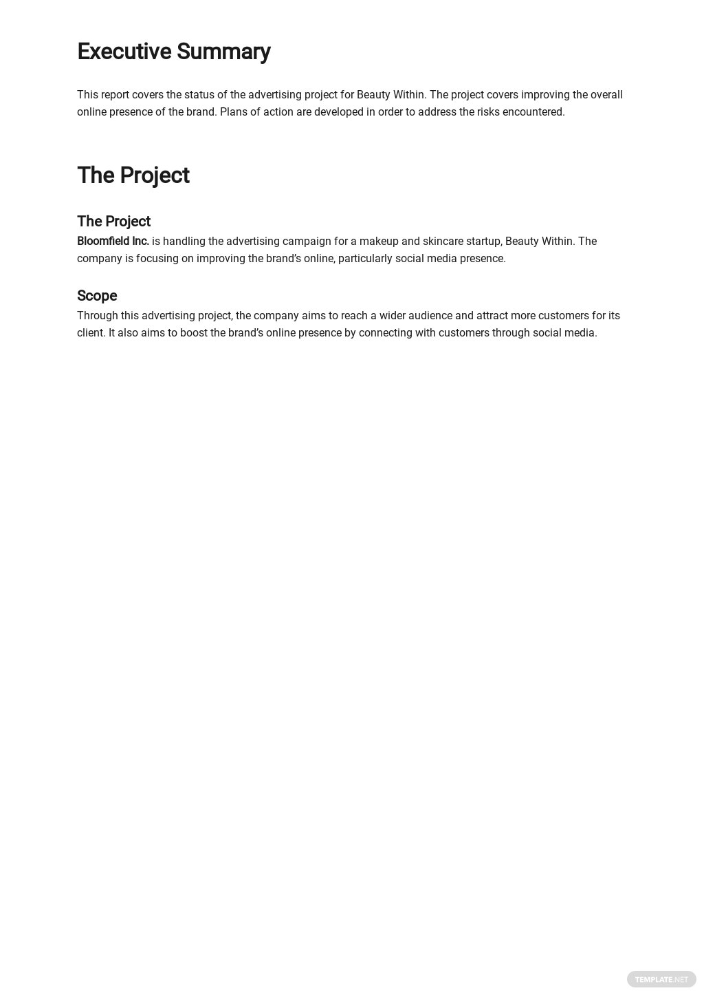 Editable Advertising Agency Monthly Client Report Template 1.jpe