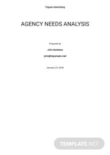 Agency Needs Analysis Template