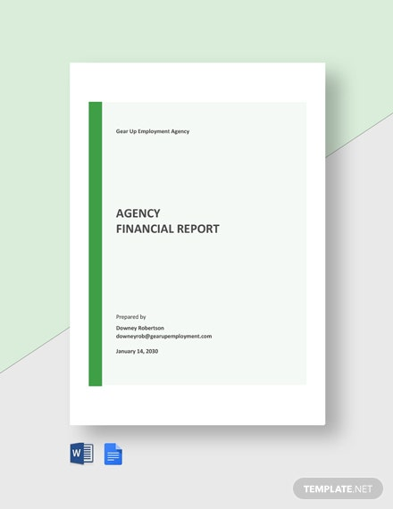 Agency Financial Report Template