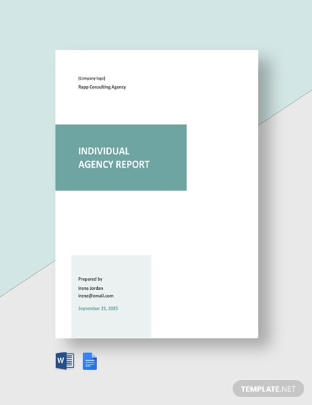 Individual Agency Report Template