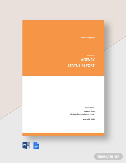 Agency Status Report Template