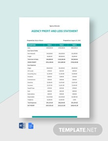 Agency Profit and Loss Statement Template