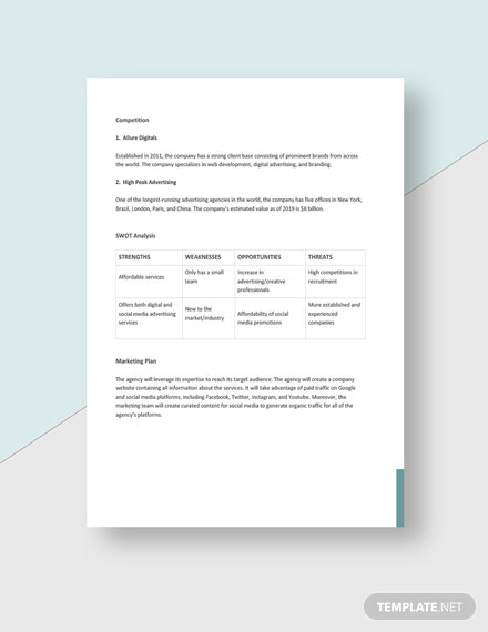 Professional Advertising Agency Business Plan Download