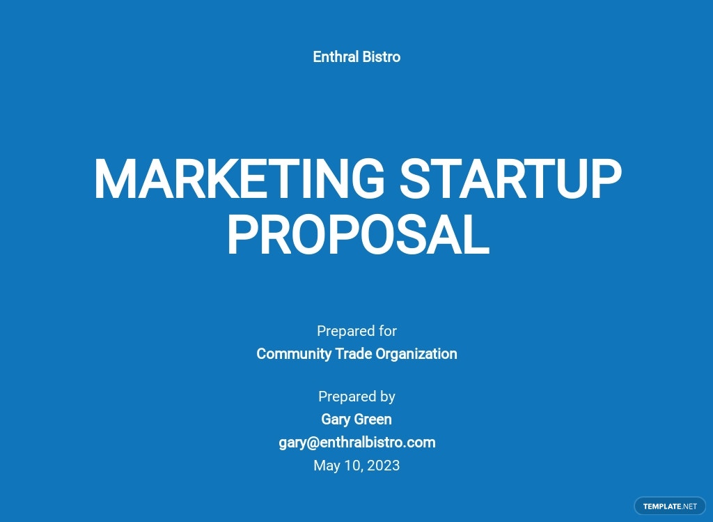 Marketing Startup Proposal Template