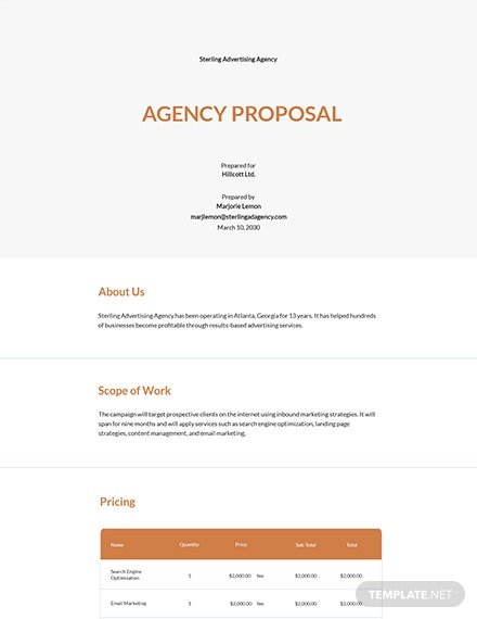 Free Sample Agency Proposal Template