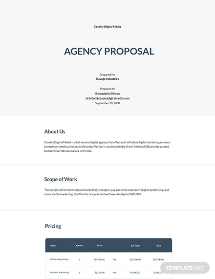 Free Professional Agency Proposal Template