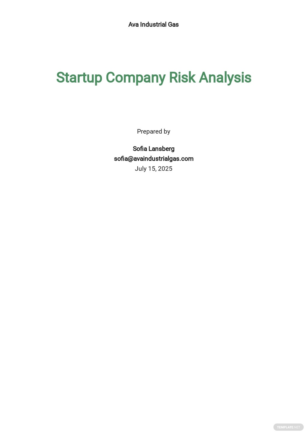 Startup Risk Analysis Template