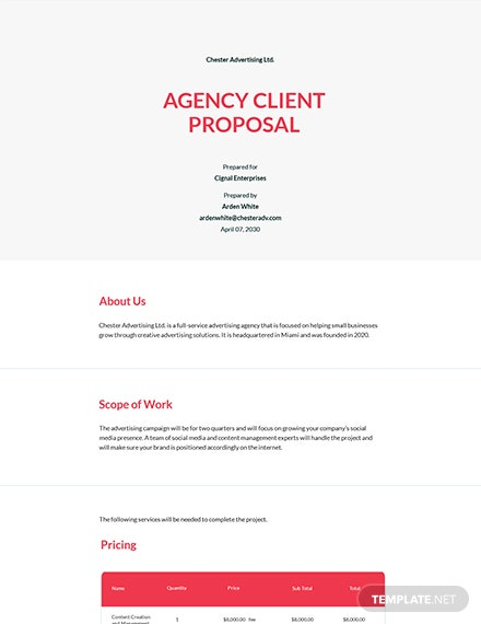 Agency Proposal to Client Template