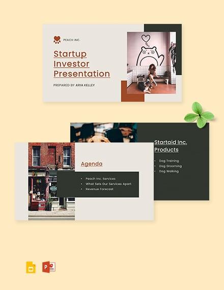Startup Investor Presentation Template