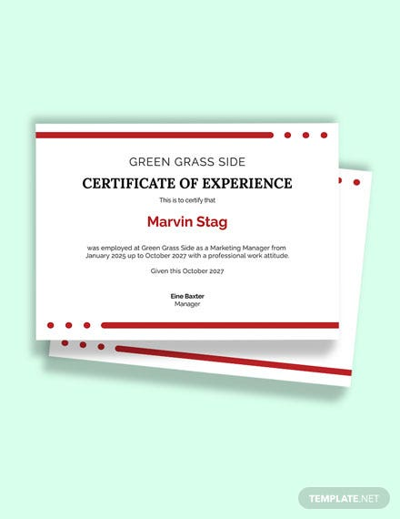 Free Application for Job Experience Certificate Template