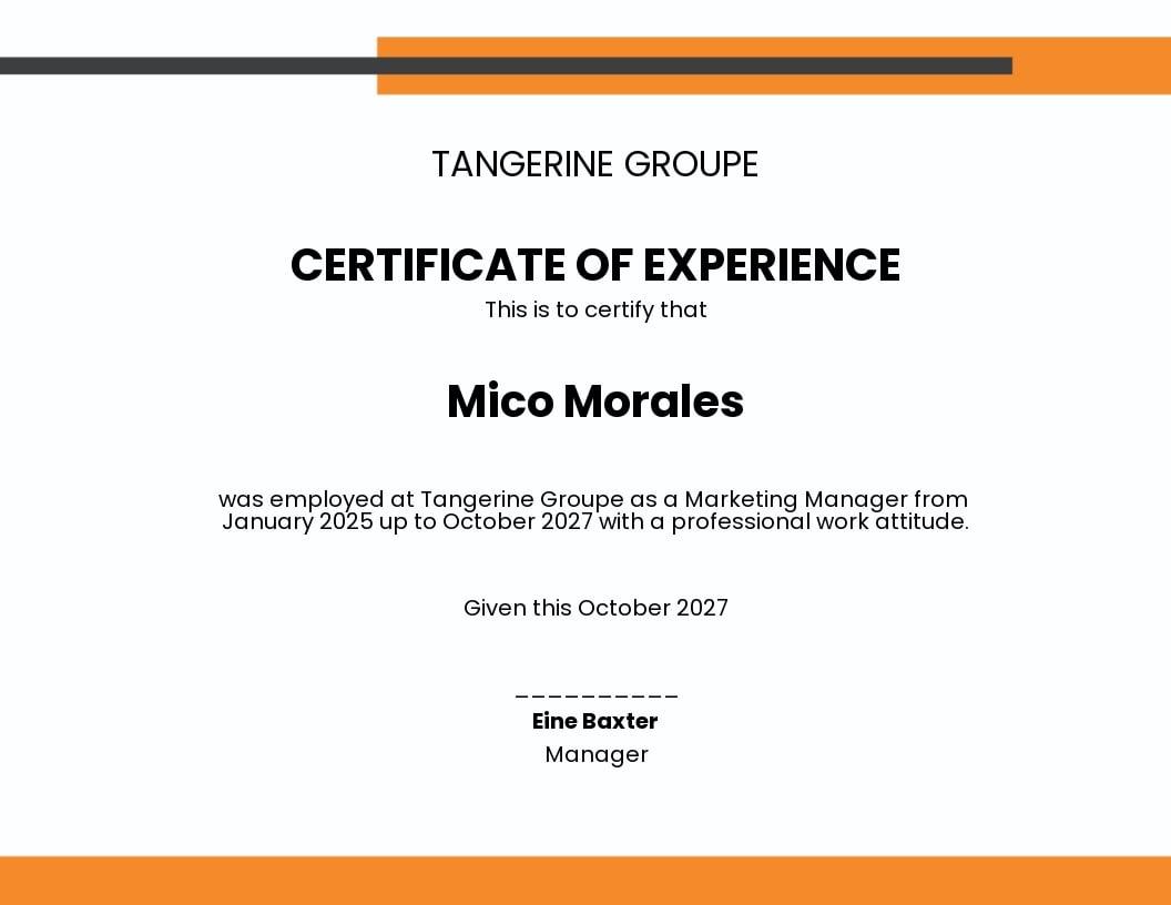 Company Job Experience Certificate Template