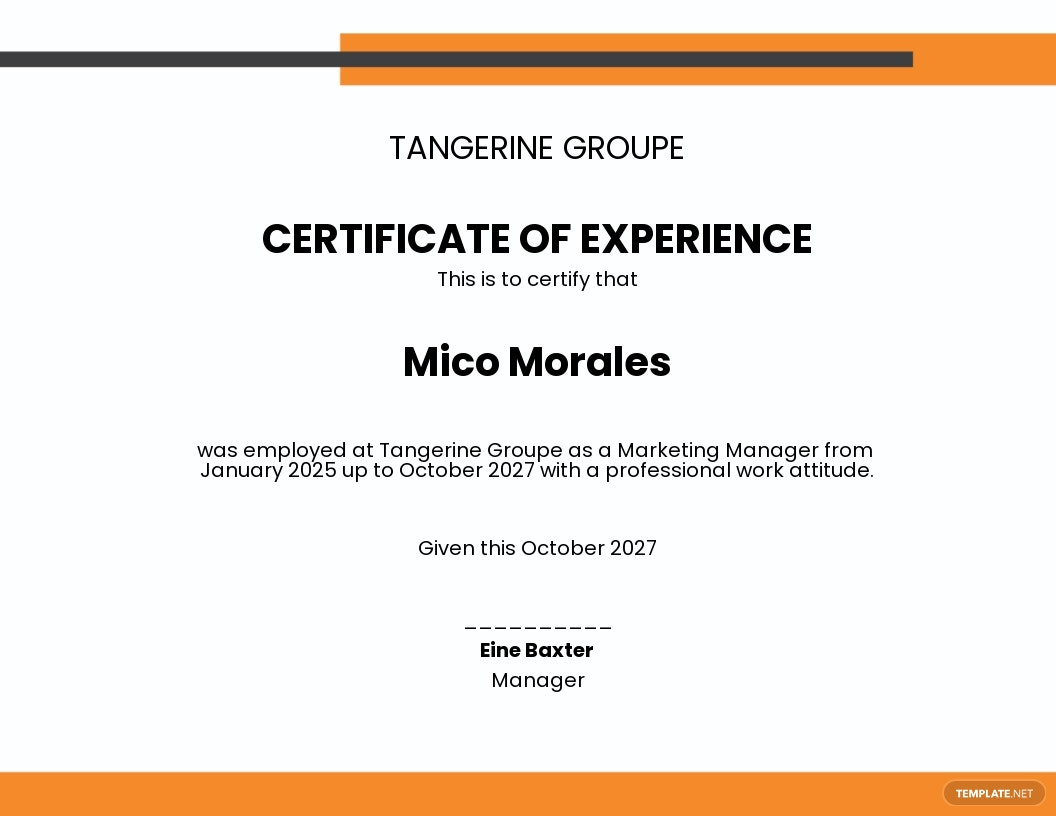 Company Job Experience Certificate Template