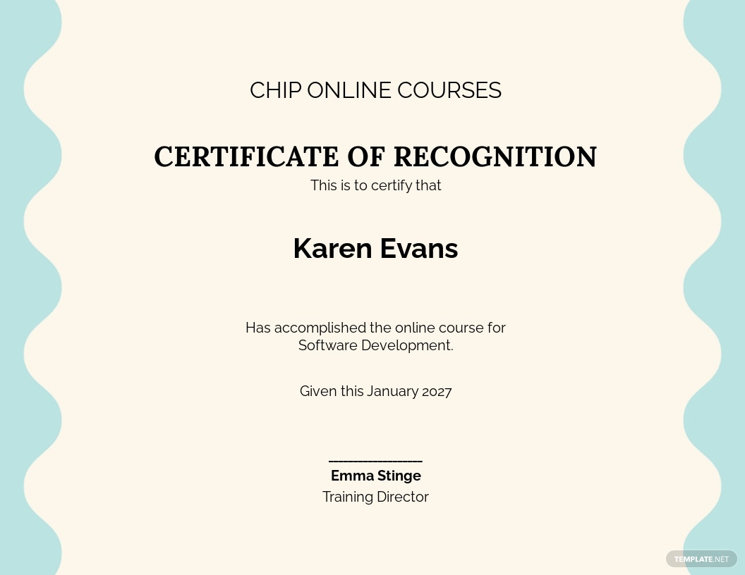 Software Online Training Certificate Template.jpe