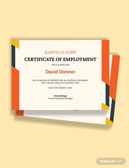 Experience Certificate for Software Developer Template