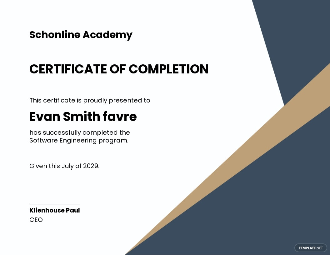 Software Engineering Certificate Template.jpe