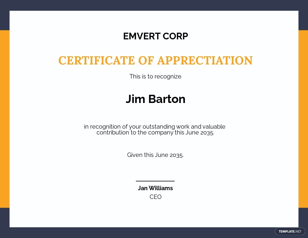 Volunteer Thank You Certificate Template