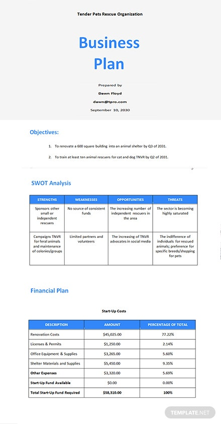Startup Nonprofit Business Plan Template