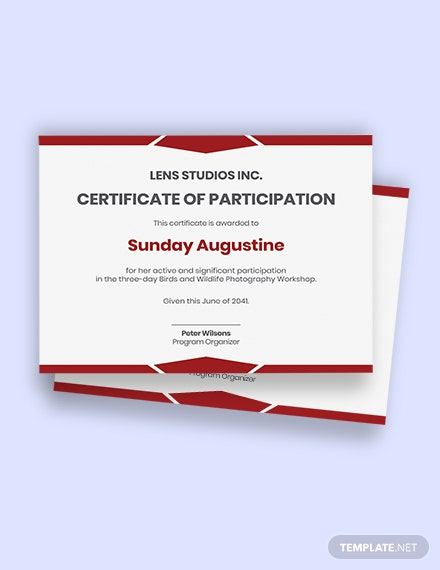 Photography Workshop Certificate Template