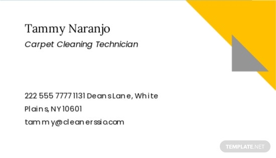 Carpet Cleaning Business Card Template 1.jpe